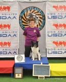 Top dog DAM MAS_5515 (1)